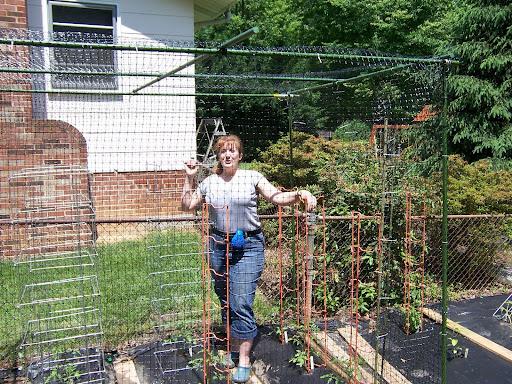 Potting Planting and the Anti Squirrel Cage Donna Migliaccio